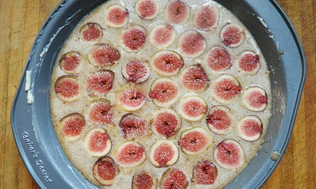THE_RECIPE_GRINDER_FIG_CAKE9